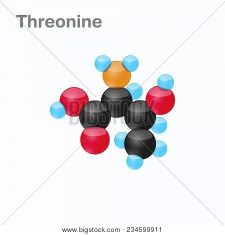 Molecule Of Threonine, Thr, An Amino Acid Used In The Biosynthesis Of Proteins, Vector Illustration