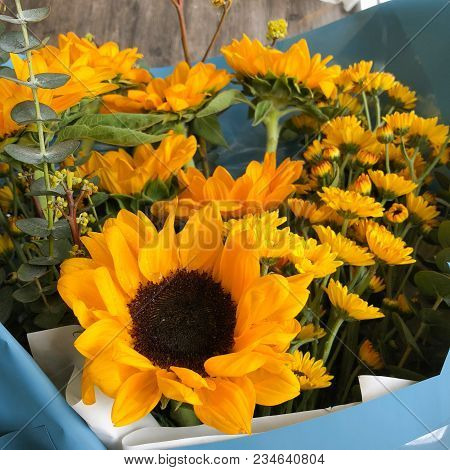 Close Up Of Bouquet Of Sunflowers, Bouquet Of Yellow Sunflowers