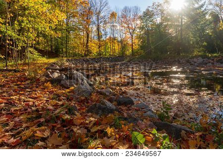 Landscape In A Park With Trees Leaves Of Changing Colors And Stones By A Water Pond River
