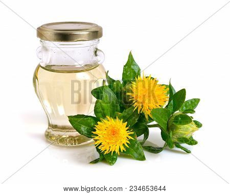 Safflower Plant With Oil In The Bottle. Isolated On White Background.