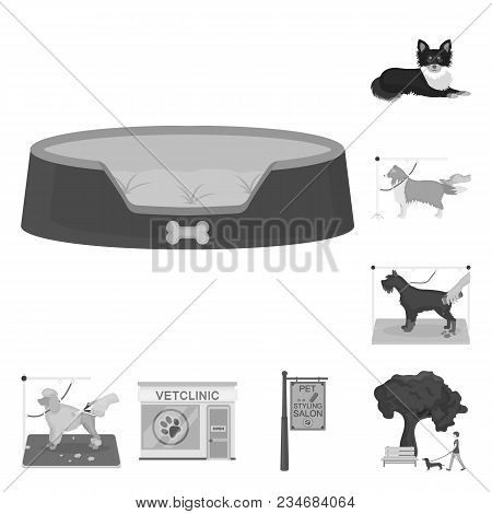 Pet Monochrome Icons In Set Collection For Design. Care And Education Vector Symbol Stock  Illustrat