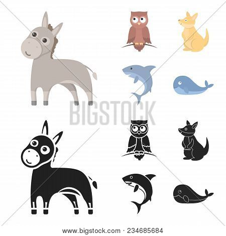 Donkey, Owl, Kangaroo, Shark.animal Set Collection Icons In Cartoon, Black Style Vector Symbol Stock