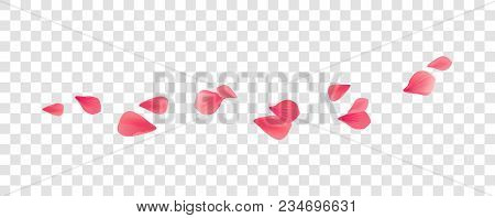 Petals Roses Flowers. Pink Red Sakura Flying Petals Isolated On Transparent Background. Vector Eps 1