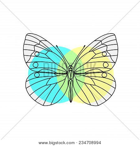 Vector. Abstract Polygonal Butterfly. Silhouette Line Flat Butterfly