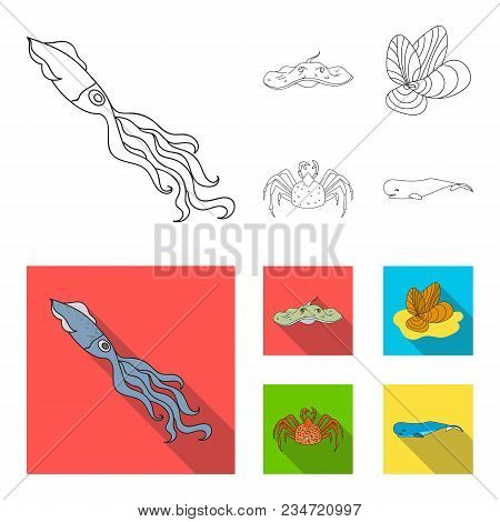 Electric Ramp, Mussels, Crab, Sperm Whale.sea Animals Set Collection Icons In Outline, Flat Style Ve