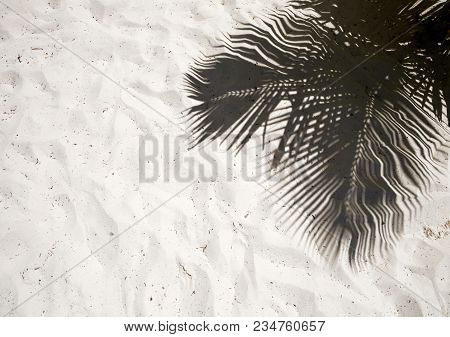 Palm Trees Cast Shadows On The Smooth Golden Sand Of A Remote Tropical Island Beach In Dominican Rep