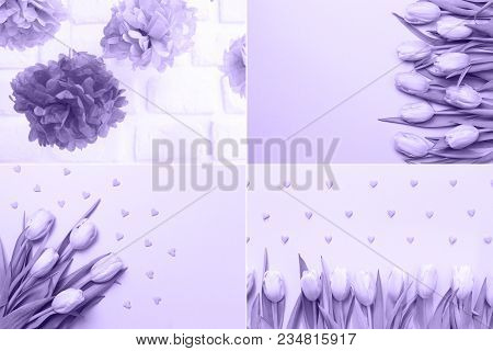 Collage With Ultra Violet Toned Images. Pantone Color Of The Year Concept. Spring Celebrations Flowe
