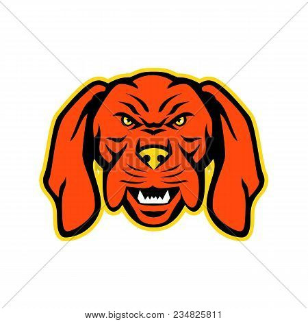 Mascot Icon Illustration Of Head Of An Angry And Aggressive Hungarian Or Magyar Vizsla Sporting, Poi