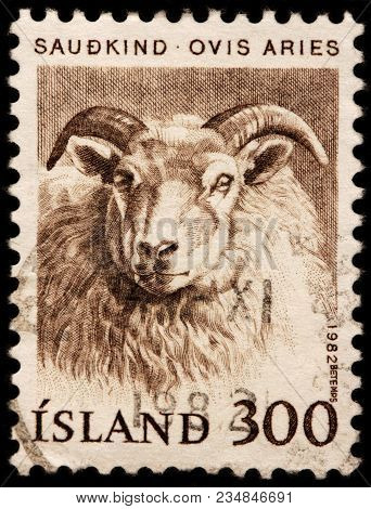 Luga, Russia - January 16, 2018: A Stamp Printed By Iceland Shows Ram - A Quadrupedal, Ruminant Mamm