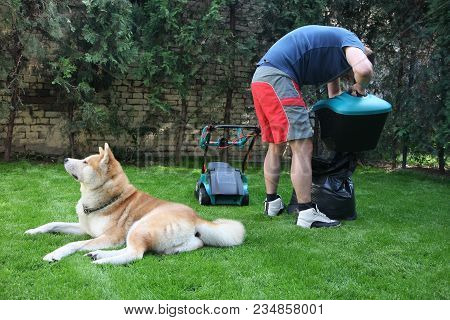 Man Preparing To Mow The Grass In The Company Of His Dog