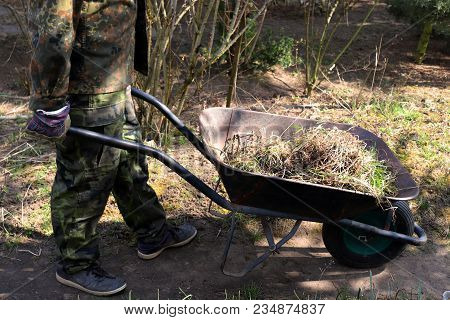 Gardener Working In The Vegetable Garden, Organic Farming Concept. Organic Farming Is An Alternative