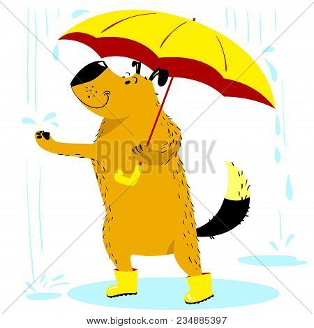 Fall Season Dog Character. Cute Pet Under The Rain With Umbrelle And Boots. Vector Cartoon Dog For S