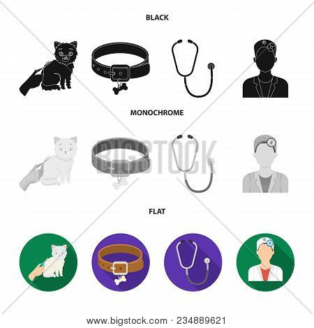 Collar, Bone, Cat, Haircut .vet Clinic Set Collection Icons In Black, Flat, Monochrome Style Vector