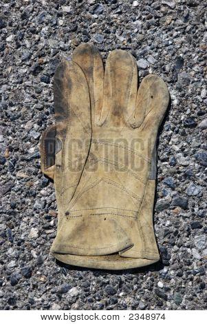 Glove 219