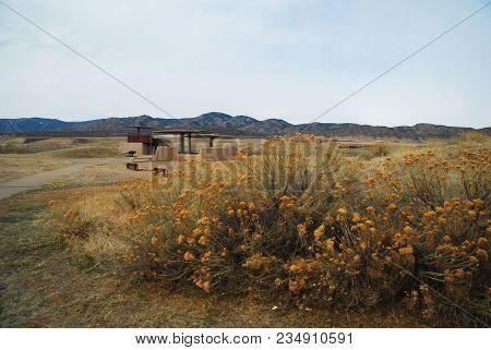 Colorado Meadows / Views From Near Colorado Springs, Colorado