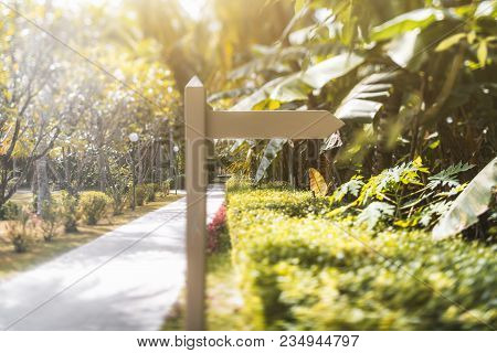 True Tilt-shift Shot Of A Wooden Blank Waypoint Marker Located Next To The Footpath Of A Tropical Re