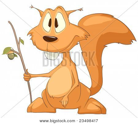 Cartoon Character Squirrel Isolated on White Background. Vector. poster