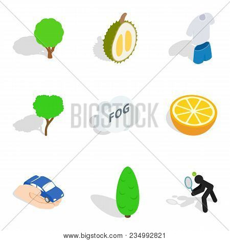 Vitality Food Icons Set. Isometric Set Of 9 Vitality Food Vector Icons For Web Isolated On White Bac