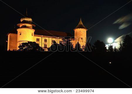 Castle in Wisnicz