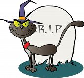 Halloween witch cat by a tombstone cartoon character poster