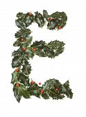 Holly Leaves with berry's in the form of the letter E. Isolated on white. poster