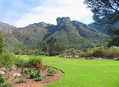 KIRSTENBOSCH BOTANICAL GARDENS, CAPE TOWN, SOUTH AFRICA, WITH A LAWN IN THE FORE GROUND AND A MOUNTAIN IN THE BACK GROUND poster