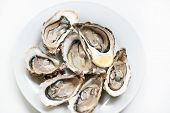 Fresh oysters. Raw fresh oysters are on white round plate, image isolated, with soft focus. Restaurant delicacy. Fresh raw oysters. Saltwater oysters. poster