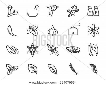 Herbs And Spices For Natural Wellness Outline Flat Icons For Web And Ui Design. Herbs And Spices Out