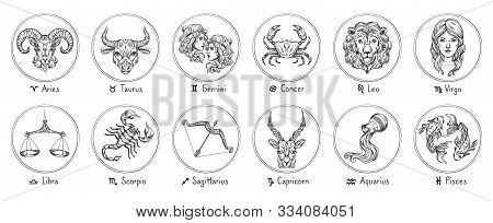 Zodiac Signs. Sketch Cancer, Scorpio And Pisces. Hand Drawn Taurus, Virgo And Capricorn. Aries, Leo