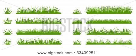 Green Grass Silhouette. Cartoon Lines Of Plants And Shrubs For Boarding And Framing, Eco And Organic