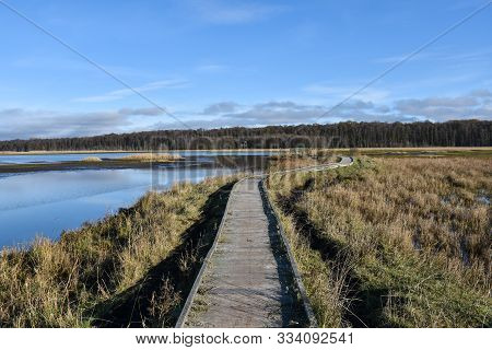 Wooden Footbridge Through The Marshland In The Swedish Nature Reserve At Beijershamn On The Island O