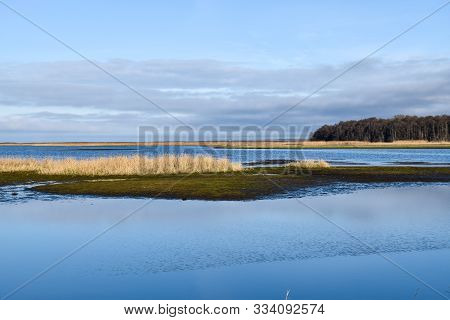 Sunlit Wetland By Fall Season By Tne Nature Reserve Beijershamn At The Swedish Island Oland
