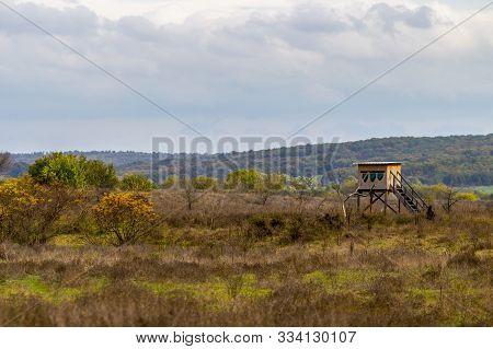 Birdwatching House Behind A Dead Tree At Zlato Pole Or Gold Field Protected Area, Municipality Of Di