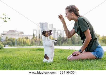 Attractive Girl Walk The Dog. Jack Russell Terrier. Having Fun Playing In Outdoors. Playful Mood. En