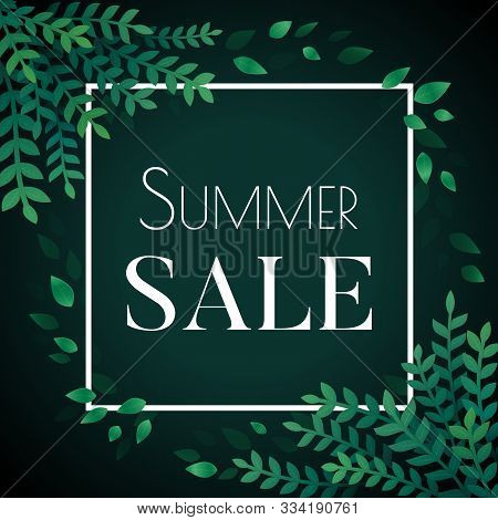 Summer Sale Flyer, Web, Greeing Card, Poster, Banner Template. White Square Frame And Green Leaves O