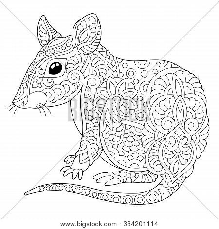 Coloring Page. Coloring Book. Colouring Picture With Mouse. Rat - 2020 Year Symbol In Chinese Zodiac