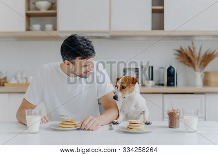 Image of brunet unshaven European man spends free time together with pedigree dog, eat pancakes in kitchen, enjoys sweet dessert, dressed casually. Breakfast, family, animals and eating concept poster