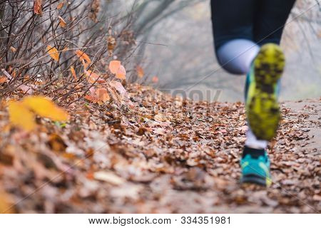 Female Jogger Legs Feets Close Up Back. Running Woman Legs In Defocus, Fallen Foliage On The Ground,