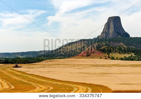 Combine Harvesting Crops Near Devils Tower National Monument (bear Lodge In Native American Culture)