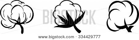 Cotton Icon Isolated On White Background Vector, White, Wool
