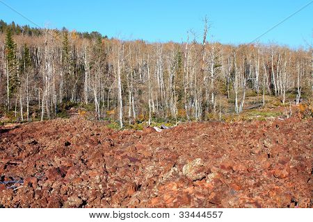 Lava field amongst the woodlands of the Dixie National Forest of Utah. poster