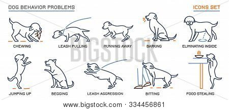 Dog Behavior Icons Set. Domestic Animal Or Pet Language. Chewing, Begging, Biting, Food Stealing. Do