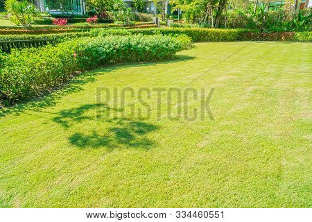 Green Grass, Landscaped Formal Garden, Front Yard With Garden Design, Peaceful Garden, Background De