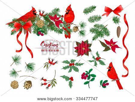 Cardinal Bird - A Symbol Of Christmas. Christmas Wreath Of Spruce, Pine, Poinsettia, Fir. Set Of Ele