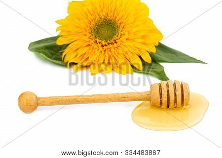 Honey, Wooden Drizzler And Sunflower, Isolated On White.