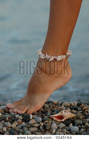 Woman's Foot With The Sea Shell Bracelet
