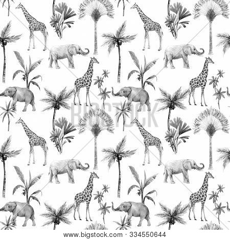 Watercolor Hand Drawn Seamless Patterns With Safari Animals And Palm Trees. Elephant Giraffe.