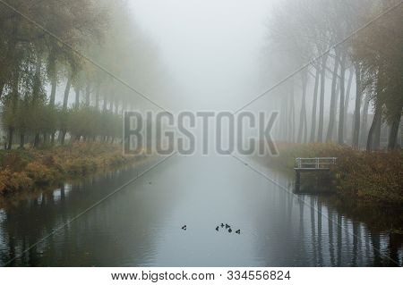 A Foggy Morning Along The Water In Damme, Bruges. Belgium