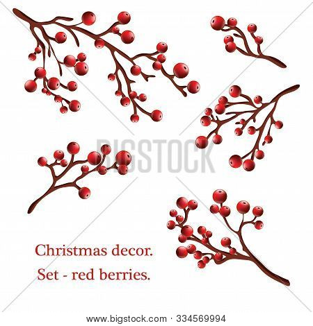 Christmas Holly Branches Realistic Set. Holly Tree Twigs With Red Berries Collection. Xmas Decorativ
