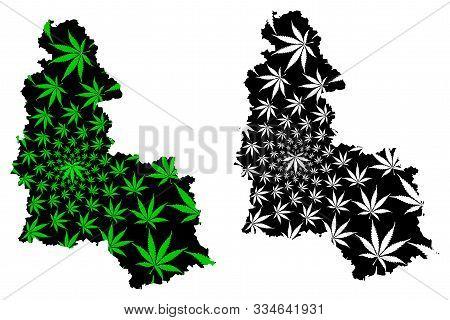 Sumy Oblast (administrative Divisions Of Ukraine, Oblasts Of Ukraine) Map Is Designed Cannabis Leaf